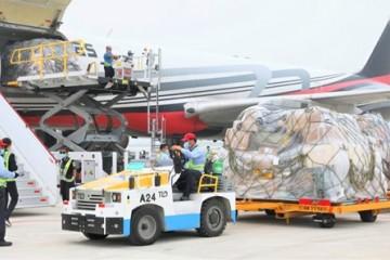 大兴机场开通首条货运航线 提升京津冀航空货运能力