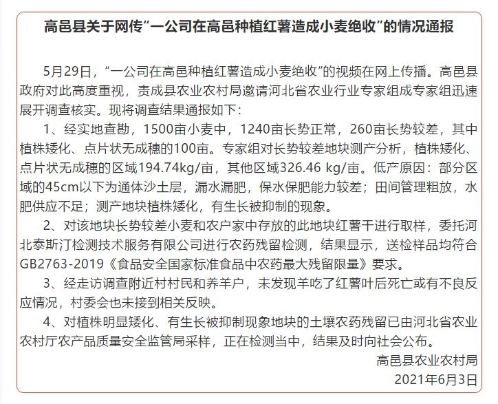 网传一公司在高邑种植红薯造成小麦绝收河北高邑农业农村局发布调查结果