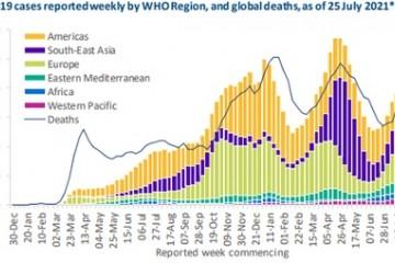 WHO称上周美国新增病例超50万未来两周全球累计恐破2亿